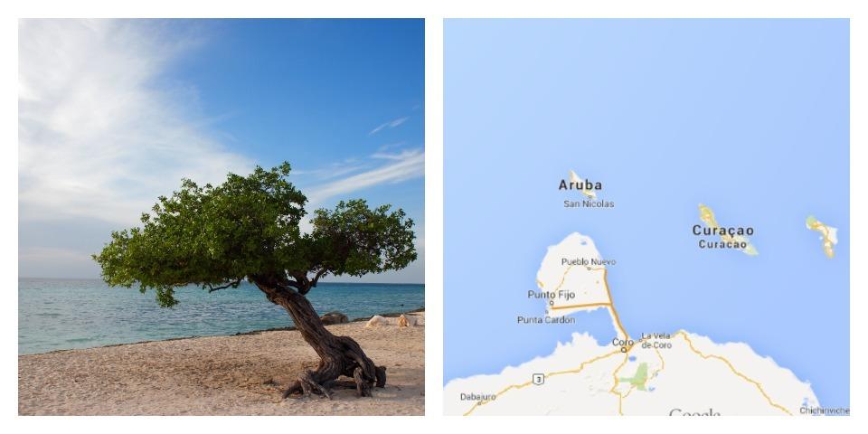 Reisgids Aruba: Bon Bini!