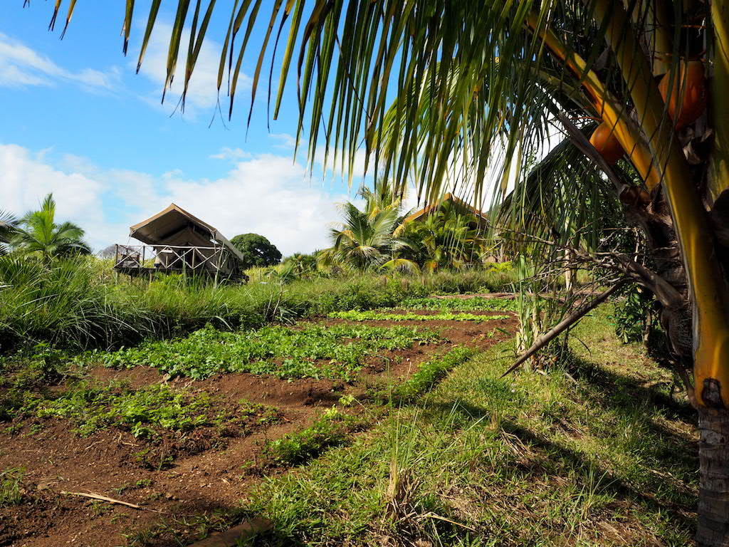 Otentic Kamperen op Mauritius